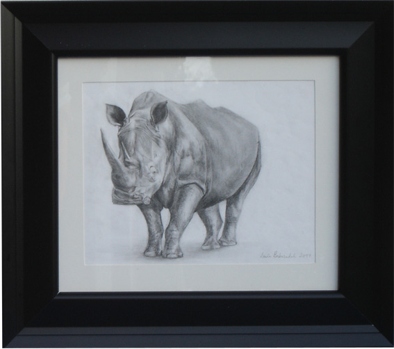 Lonely Rhino (framed)